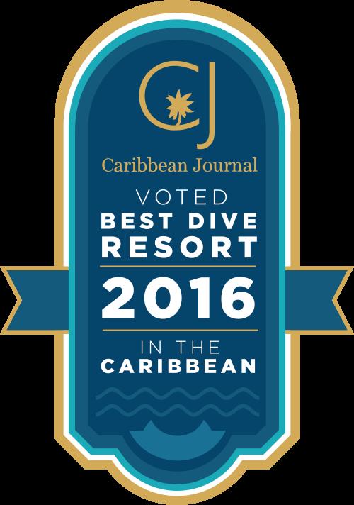 Best Dive Resort
