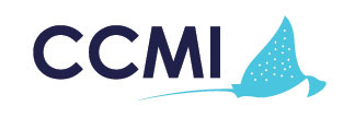 logo-ccmi